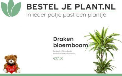 Bestel Je Plant.nl